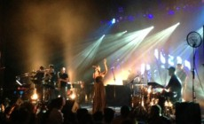 bonobo-WARFIELD-1